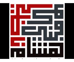 Hisham Nazir & Co